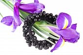 pic of bobbies  - Bobby pin with flowers on a white background  - JPG