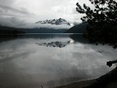 picture of redfish  - The world appears black and white on a misty morning at Redfish Lake in Idaho - JPG