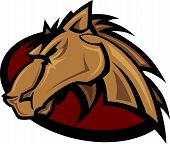 Mustang Stallion Graphic Mascot Vector Image