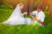 couple picnic sunlight newlyweds wedding in forest glade, groom