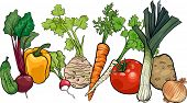 Vegetables Big Group Cartoon Illustration