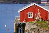 stock photo of lofoten  - Picturesque red fishing hut on the coast of fjord on Lofoten islands in Norway - JPG