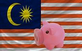 Piggy Rich Bank And  National Flag Of Malaysia