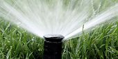 stock photo of water jet  - Automatic Garden Irrigation Spray system watering lawn - JPG