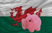 Piggy Rich Bank And  National Flag Of Wales