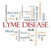 Lyme Disease Word Cloud Concept