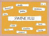 Swine Flu Corkboard Word Concept