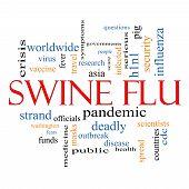 Swine Flu Word Cloud Concept