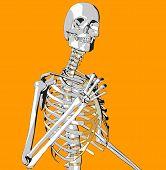 Bone 90