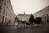 Carriage Ridding On The Streets Of Vienna, Austia