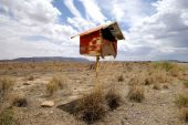 Postbox In The Desert poster