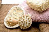 Massage brush with Mussel and Towel
