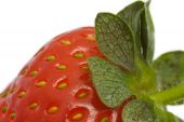 Extreme Close Up Of A Strawberry