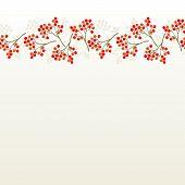 rowan berry mountain ash berries beautiful delicate autumn season seamless top horizontal border