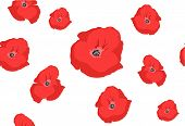 Seamless Poppy Pattern