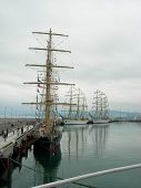Sailships in  port of Sochi.