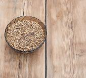 Barley grains of malt in glass bowl