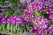 Bouquet Of Dendrobium Pompadour Orchids In Flower Market Thailand