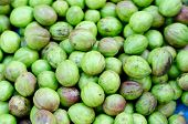 pic of laxatives  - Terminalia bellirica for sale in local market - JPG