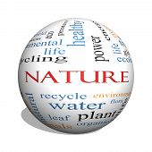 Nature 3D Sphere Word Cloud Concept
