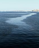 Trace In Sea