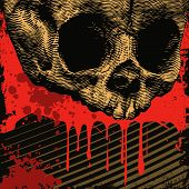 vector grunge background with skull