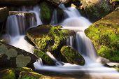Cascade With Mossy Rocks