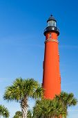 Ponce Inlet Light And Palms