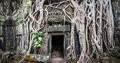 Angkor Wat Cambodia. Ta Prom Khmer ancient Buddhist temple in jungle forest. Famous landmark, place