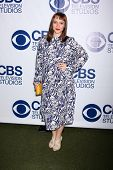 LOS ANGELES - MAY 19:  Ren�?�?�?�½e Felice Smith at the CBS Summer Soiree at London Hotel on Ma
