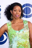 LOS ANGELES - MAY 19:  Kim Wayans at the CBS Summer Soiree at London Hotel on May 19, 2014 in West H
