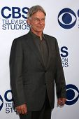 LOS ANGELES - MAY 19:  Mark Harmon at the CBS Summer Soiree at London Hotel on May 19, 2014 in West
