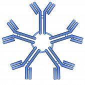 IgM type antibody molecule pentamer