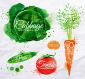 foto of cucumbers  - Vegetables set drawn watercolor blots and stains with a spray cabbage - JPG