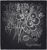 Chalkboard vegetables background. Eps10