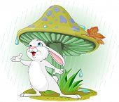 Cute rabbit wearing rain gear under mushroom