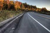 Autumn Colors And Road