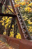 Part Of Tumwater Canyon Bridge.