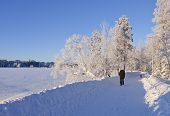 UMEA, SWEDEN ON JANUARY 19