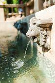 Lion Fountain with sun light