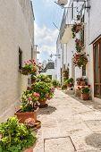 Trullo In Alberobello Street