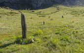 Three-stone Menhirs, Altai, Russia.