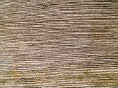 Weathered Gray Wood Grain Background Close Up poster