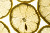 Slices of lemon on a white background