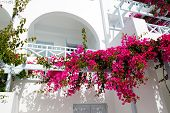 picture of greek-island  - Building of hotel in traditional Greek style Santorini island Greece - JPG