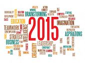 business strategy in 2015 concept word cloud