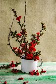 picture of barberry  - Still life with a bouquet of barberry - JPG