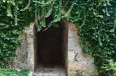 stock photo of foliage  - passage in the stone wall under the foliage - JPG