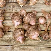 stock photo of taro corms  - Closeup Group of taro roots on wooden table background - JPG