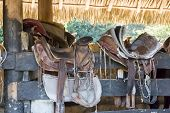 stock photo of western saddle  - Saddles sit on a fence in the Caribbean  - JPG